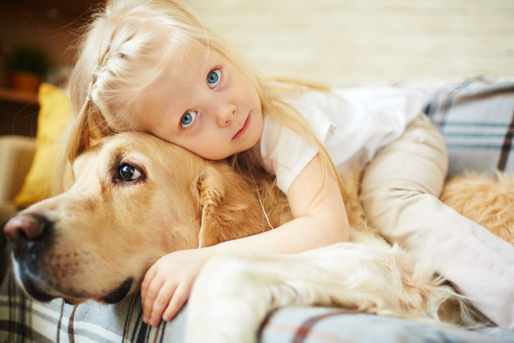 Cute child lying on Therapy Animal